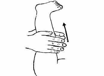 rodamientos El masaje Infantil Paso a Paso